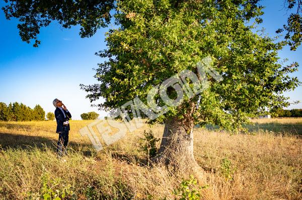 Senior botanist talking with the magic tree