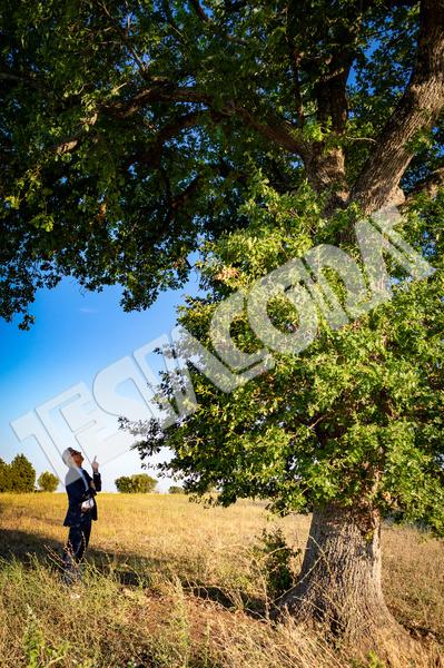 Senior Botanist giving orders to the magic tree