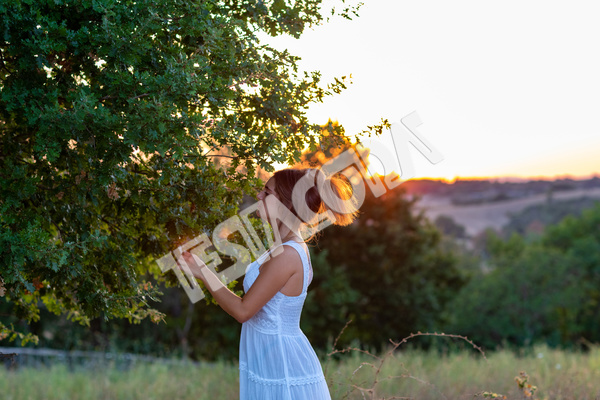 A pretty romantic young girl in profile with long blond tied hair, dressed in white, at sunset, touches the leaves of the magic tree in countryside