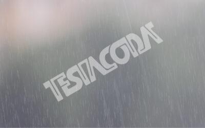 Heavy rain on a blurred background (w/ sound)